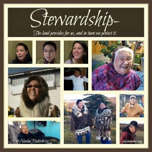 stewardship collage